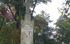 2006-238
