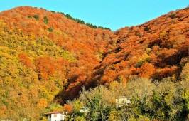Το χωριό Γρεβενίτι