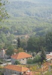 Σιταριά