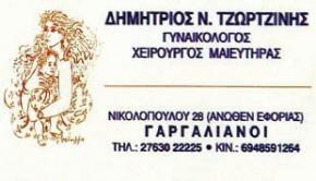 Δημήτριος Ν.Τζωρτζίνης
