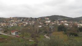gauriani