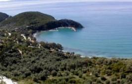 Παραλία Αρίλλα