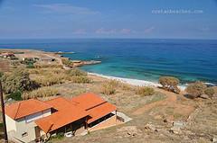 Άγιος Αντώνιος - Σέλλες