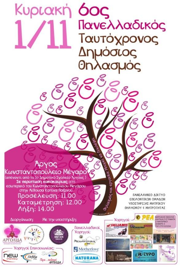 Αφίσα ΠΤΔΘ 2015