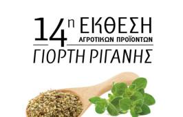 afisa_rigani_diorthosi
