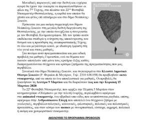 .ΦΕΣΤΙΒΑΛ ΝΤΟΚΙΜΑΝΤΕΡ-ΔΤ 28.2.2020_Page_1